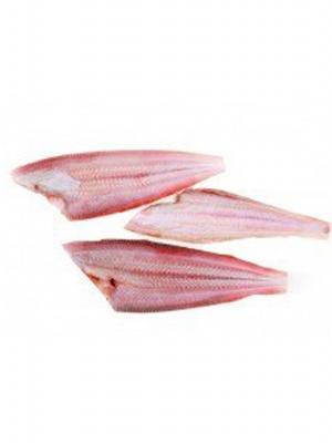 ماهی زبان فیله
